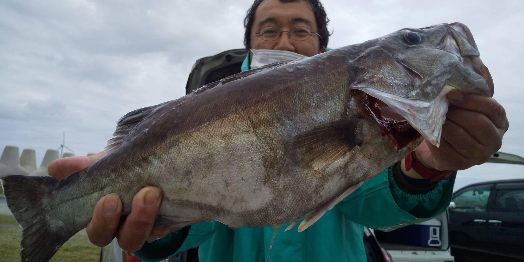 【4月17日】釣果情報